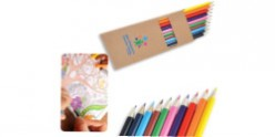 Coloured Full Length Colouring Pencils PK10 - LL1907